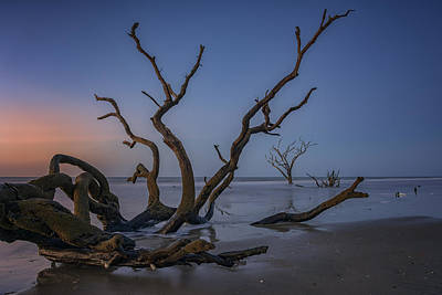 Edisto Photograph - The Boneyard At Botany Bay by Rick Berk