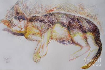 Cat Painting - The Burmese by Sukalya Chearanantana