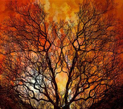 Burning Bush Digital Art - The Burning Bush by Lynn Andrews