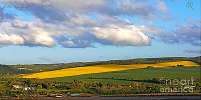 Pete Reynolds Photograph - The Cash Cow Rapeseed by Pete Reynolds