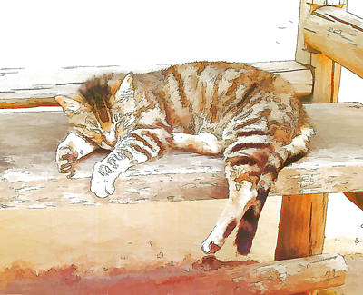 The Cat Is Back Print by Jan Hattingh