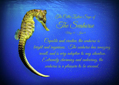 The Celtic Zodiac Sign Of Th Seahorse Print by Stephanie Laird