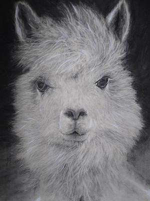 The Charming Llama Print by Adrienne Martino