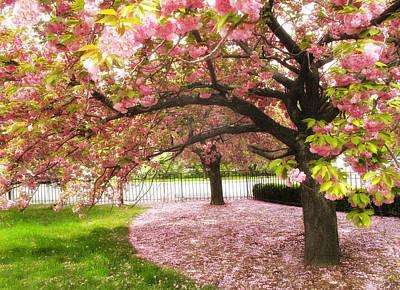 The Cherry Tree Print by Jessica Jenney