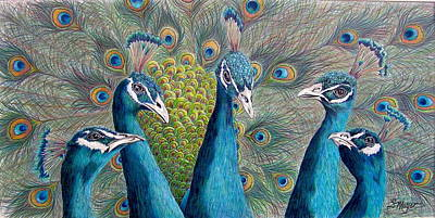 Peacock Drawing - The City Council by Susan Moyer