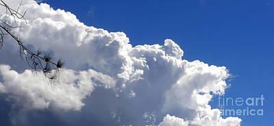 The Cloud Print by Kaye Menner