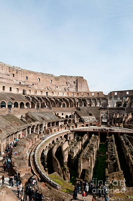 Rome Photograph - The Colosseum P by Andy Smy
