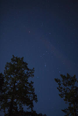 Photograph - The Constellation Orion At Night by Taylor S. Kennedy