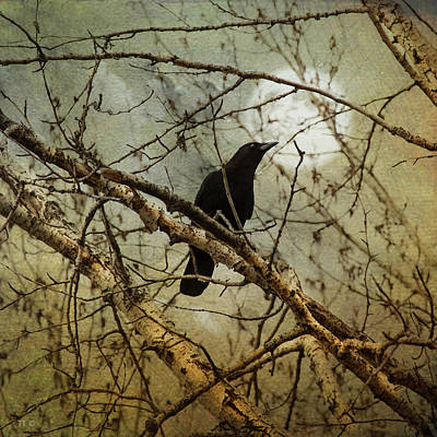 The Crow And The Moon Print by Theresa Tahara