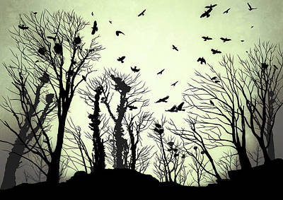 Crow Drawing - The Crows Roost - Evening Shades by Philip Openshaw