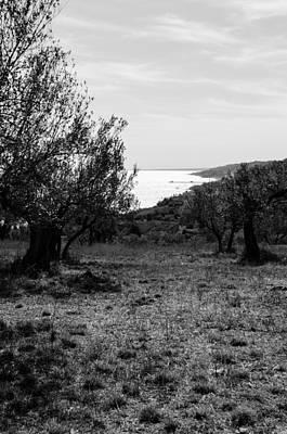 Black And White Photograph - The Diamond Sea by Andrea Mazzocchetti