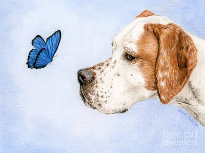 Large Drawing - The Dog And The Butterfly by Sarah Batalka