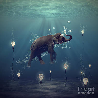 Mammals Digital Art - The Dreamer by Martine Roch