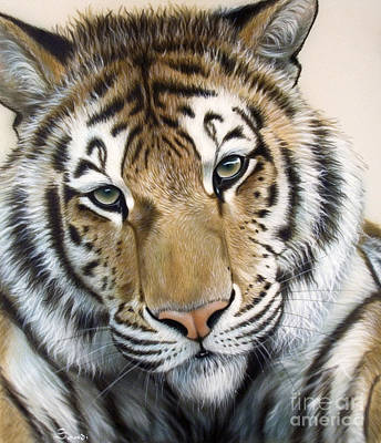 Tiger Painting - The Embrace by Sandi Baker