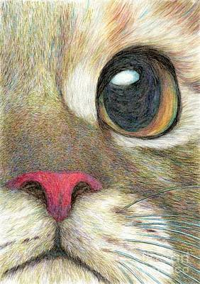 Cat Painting - The Face by Jingfen Hwu