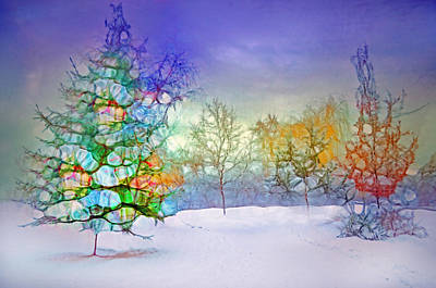 Photograph - The Festive Trees by Tara Turner