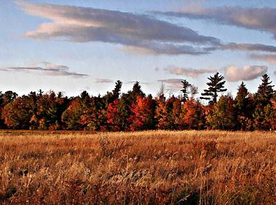 The Field At The Old Farm Original by Joy Nichols