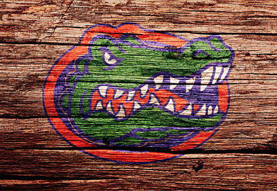 Tim Tebow Mixed Media - The Florida Gators 1a by Brian Reaves