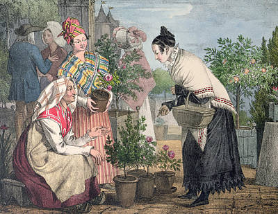 Garden Scene Drawing - The Flower Market by John James Chalon