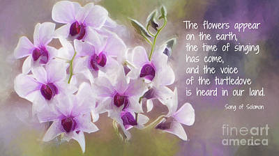 The Flowers Appear... Print by Jutta Maria Pusl
