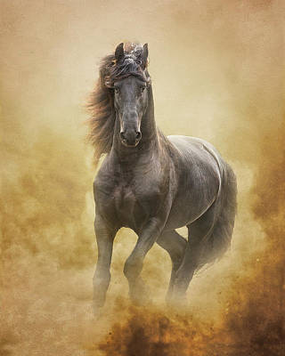 Photograph - The Friesian King by Ron  McGinnis
