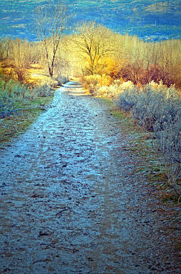 The Frosty Trail Print by Tara Turner