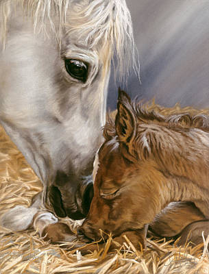 Pastel - The Gift by Kim McElroy