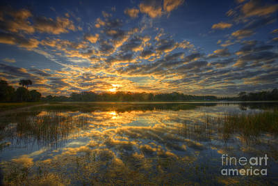 Photograph - The Golden Hour by Rick Mann