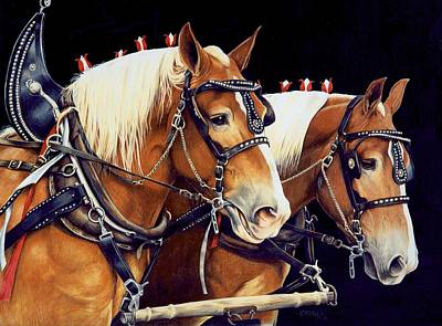 Draft Horses Drawing - The Good Team by Bethany Caskey