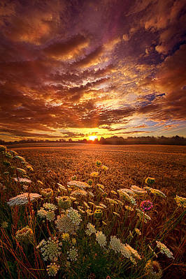 Hope Photograph - The Goodness Of The Lord by Phil Koch