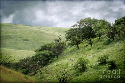 The Green Hills Of Home Print by Ellen Cotton