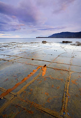 Seascape Photograph - The Grid by Mike  Dawson