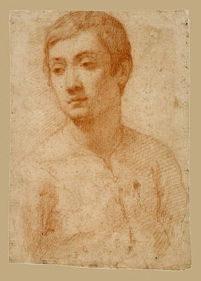 Passignano Drawing - The Head Of A Youth by Passignano