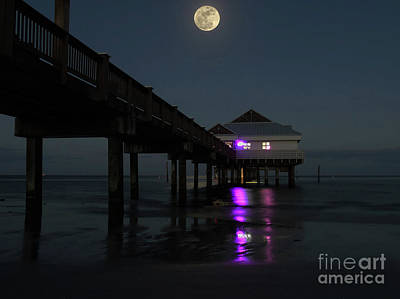 Man In The Moon Photograph - The Hunters Moon Over Pier 60 by D Hackett
