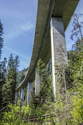 Star Wars Photograph - The Imperial Highway On The Forest Moon Of Endor by Pelo Blanco Photo