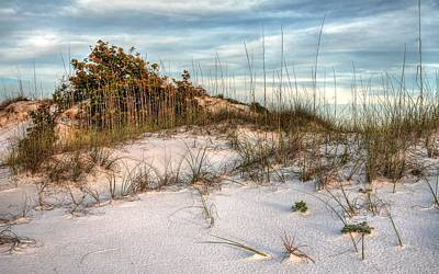The Inner Dunes Of Pensacola Beach Print by JC Findley