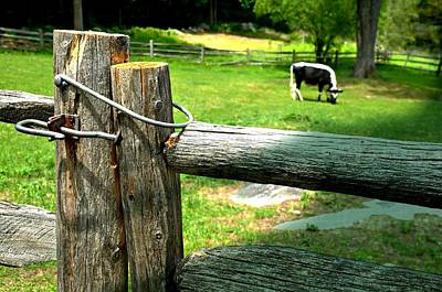 The Nature Center Photograph - The Iron Latch by Diana Angstadt