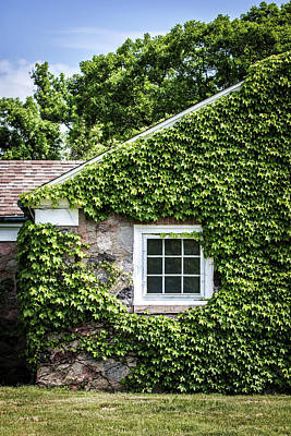 Old House Photograph - The Ivy House by Kim Hojnacki