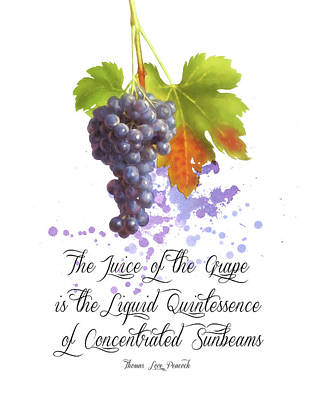 Purple Grapes Digital Art - The Juice Of The Grapes by Colleen Taylor