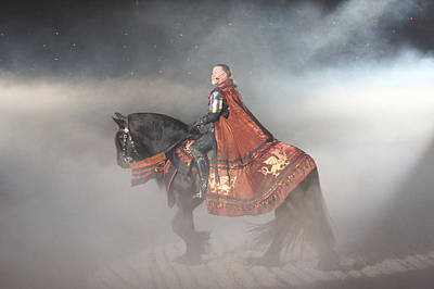 Horse Photograph - The King by Art Spectrum