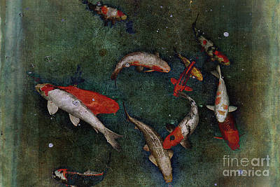 Abstract Photograph - The Koi Fish Ballet by Scott Cameron