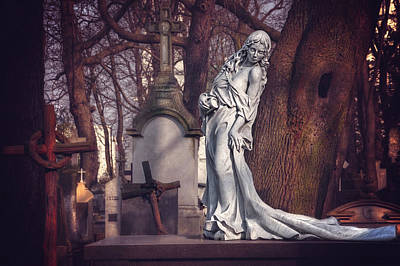 The Lady Of Powazki Print by Carol Japp
