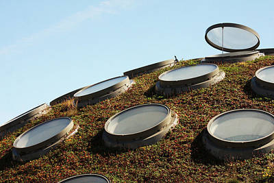 The Living Roof Print by Art Block Collections