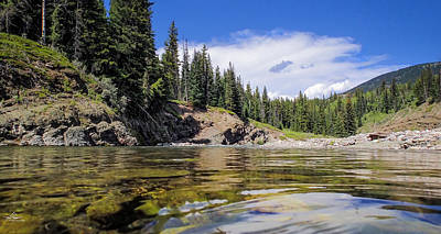 Photograph - The Livingstone River by Phil Rispin