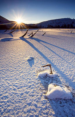 Ice Photograph - The Long Shadows Of Winter by Mike  Dawson
