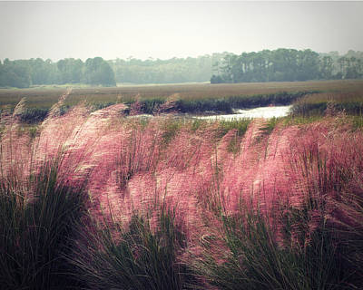 Costal Photograph - The Lowlands by Amy Tyler