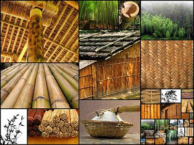 Bamboo Photograph - The Many Faces Of Bamboo by Yali Shi