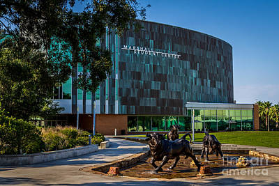 The Marshall Center At Usf  Print by Karl Greeson