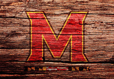 The Maryland Terrapins 1a Print by Brian Reaves