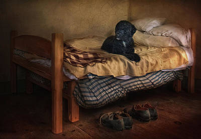 Black Dog Digital Art - The Master's Shoes by Robin-lee Vieira